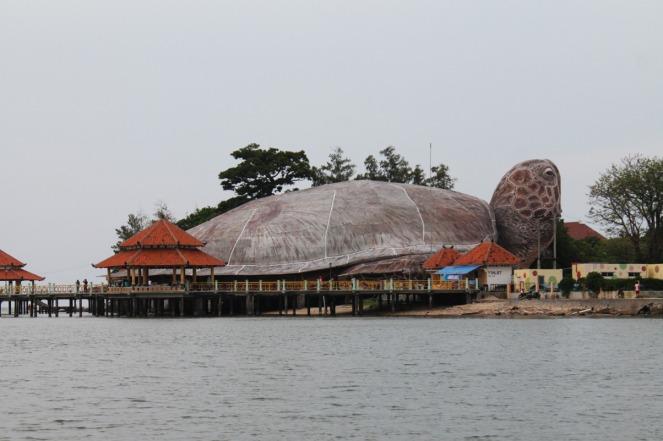 """""""Kura-kura raksasa"""" Ocean Park"""